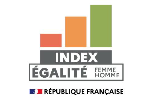 index egalité femme homme